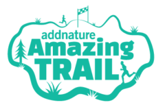 Amazing Trail